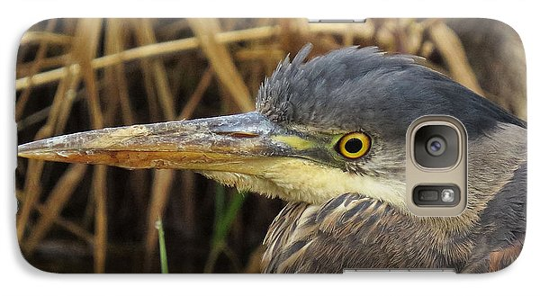 Galaxy Case featuring the photograph Great Blue Heron  by I'ina Van Lawick