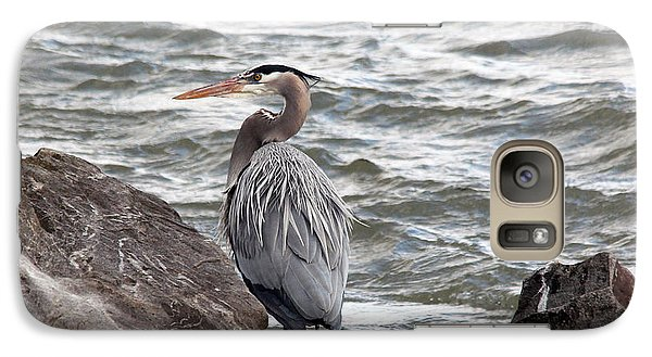 Galaxy Case featuring the photograph Great Blue Heron by Trina  Ansel
