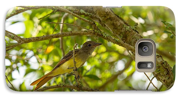 Galaxy Case featuring the photograph Great Crested Flycatcher by Doug McPherson