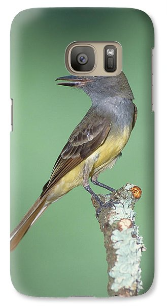 Great Crested Flycatcher Myiarchus Galaxy S7 Case