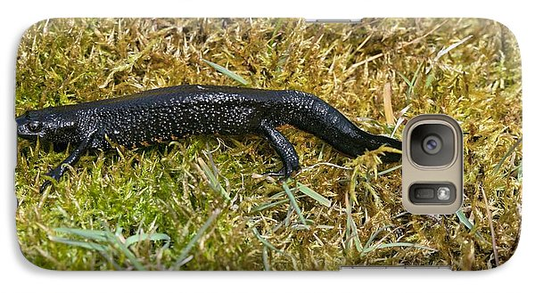 Great Crested Newt On Moss Galaxy Case by Simon Booth