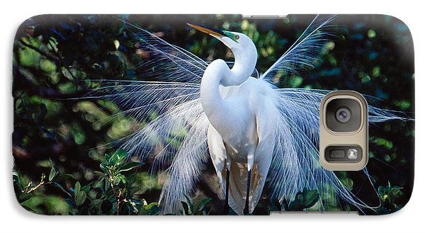 Galaxy Case featuring the photograph Great Egret Displaying Plumes by Bradford Martin