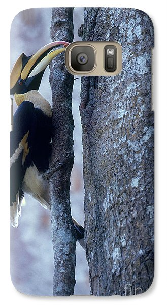 Great Hornbill Galaxy S7 Case by Art Wolfe