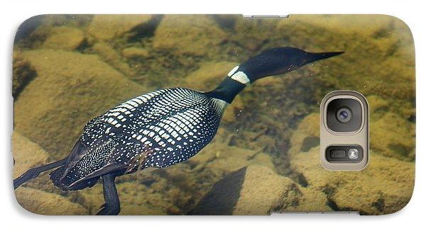 Great Northern Diver Galaxy S7 Case