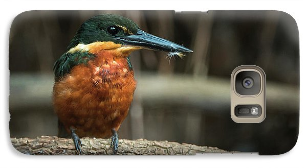 Green And Rufous Kingfisher Galaxy Case by Pete Oxford