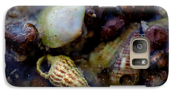Galaxy Case featuring the photograph Green And White Shell by Carole Hinding