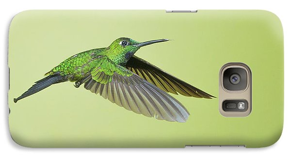 Galaxy Case featuring the photograph Green-crowned Brilliant Hummingbird by Dan Suzio