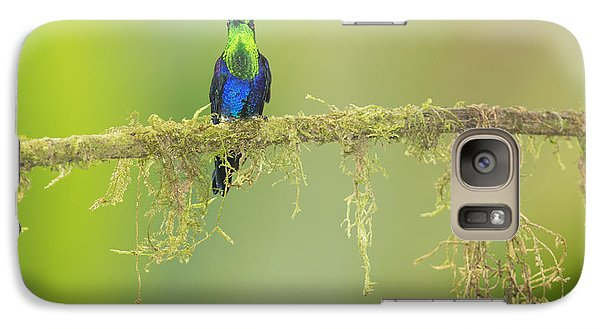 Galaxy Case featuring the photograph Green-crowned Woodnymph Hummingbird by Dan Suzio