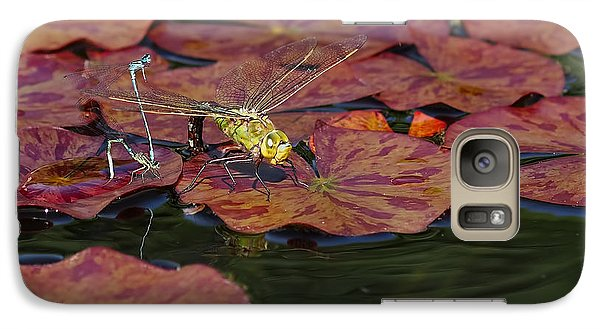 Galaxy Case featuring the photograph Green Darner Dragonfly With Friends by Rona Black