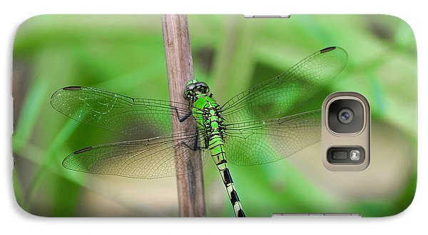 Galaxy Case featuring the photograph Green Dragonfly by Linda Segerson