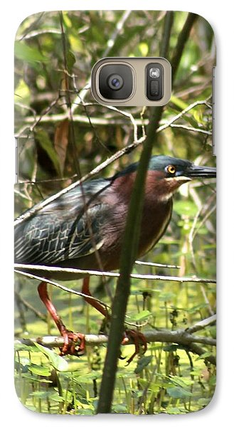Galaxy Case featuring the photograph Green Heron by Jeanne Kay Juhos