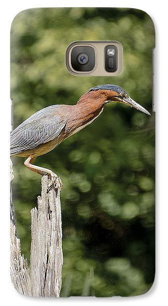Galaxy Case featuring the photograph Green Heron On Stump by Bradley Clay