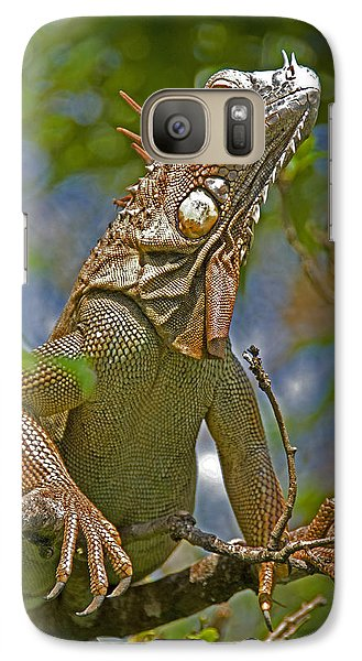 Galaxy Case featuring the photograph Green Iguana by Dennis Cox WorldViews