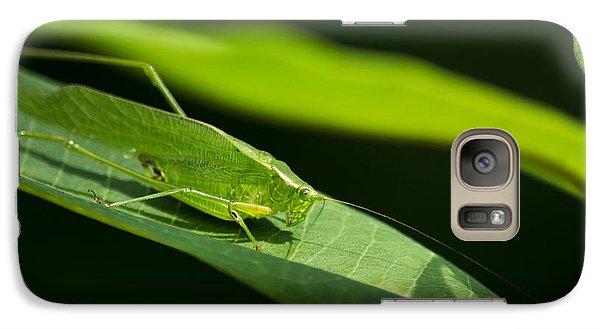 Green Katydid Galaxy Case by Christina Rollo