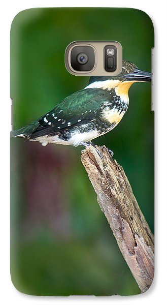 Green Kingfisher Chloroceryle Galaxy S7 Case by Panoramic Images