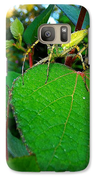 Galaxy Case featuring the photograph Green Lynx Spider 002 by Chris Mercer