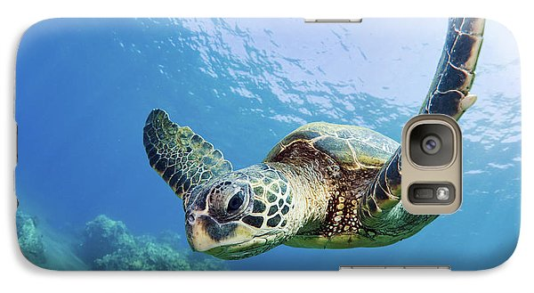 Green Sea Turtle - Maui Galaxy S7 Case by M Swiet Productions