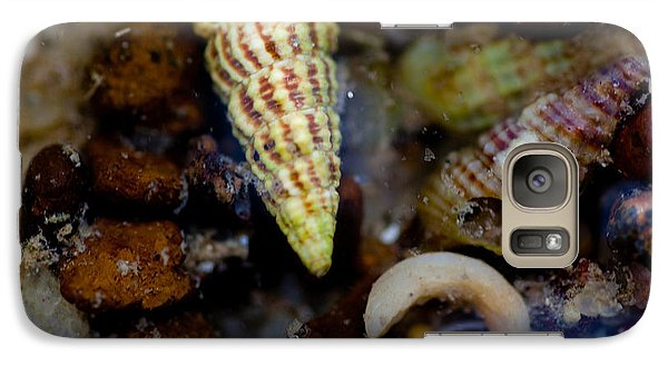 Galaxy Case featuring the photograph Green Shell by Carole Hinding