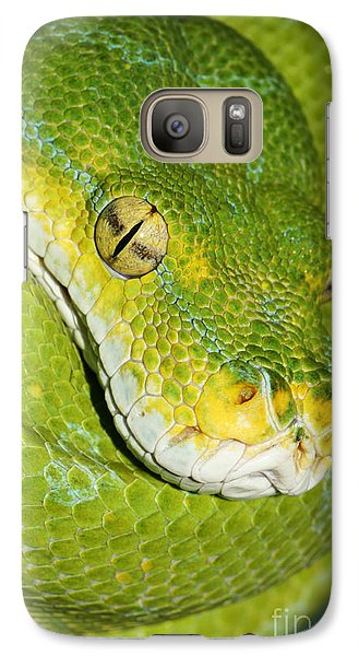 Galaxy Case featuring the photograph Green Tree Python #2 by Judy Whitton