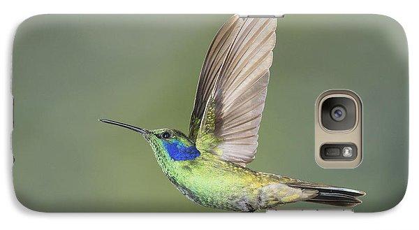 Galaxy Case featuring the photograph Green Violet-ear Hummingbird by Dan Suzio