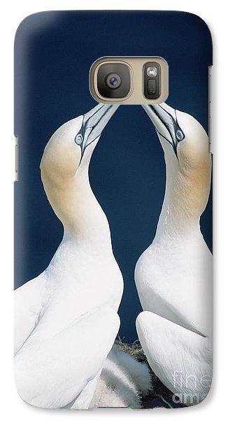 Greeting Gannets Canada Galaxy S7 Case