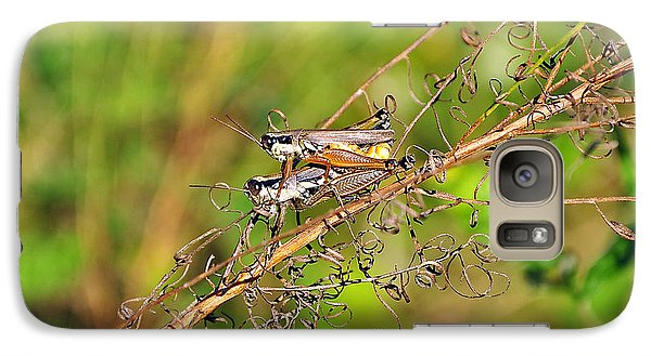 Gregarious Grasshoppers Galaxy S7 Case by Al Powell Photography USA