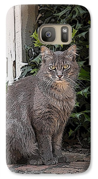 Galaxy Case featuring the photograph Grey Cat by Donald Williams