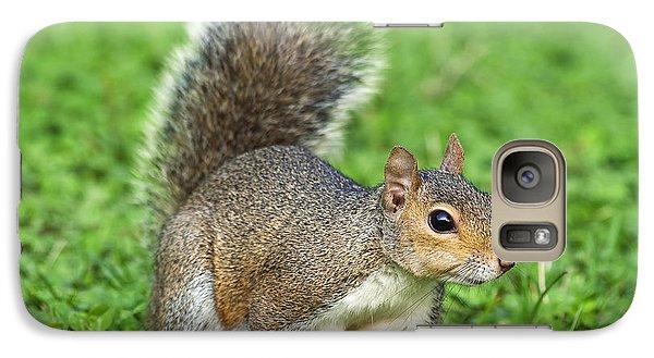 Galaxy Case featuring the photograph Grey Squirrel by Antonio Scarpi