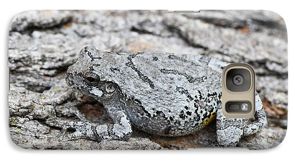 Galaxy Case featuring the photograph Cope's Gray Tree Frog by Judy Whitton