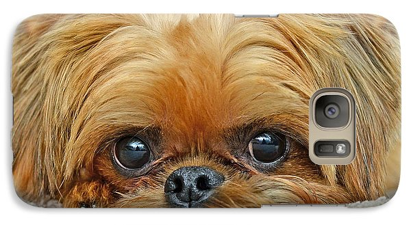 Galaxy Case featuring the photograph Griff by Lisa Phillips