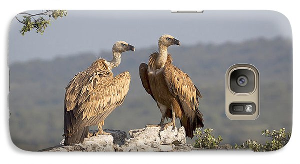 Griffon Vulture Pair Extremadura Spain Galaxy Case by Gerard de Hoog