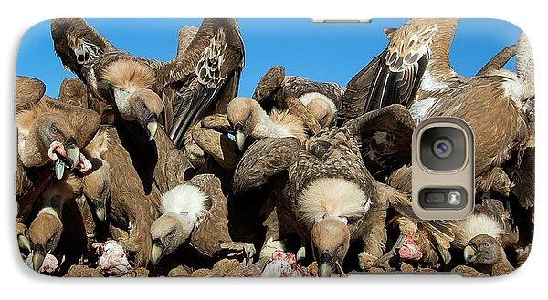 Griffon Vultures Feeding Galaxy S7 Case