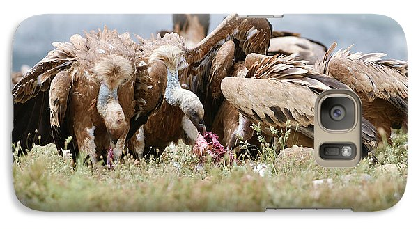 Griffon Vultures Scavenging Galaxy Case by Dr P. Marazzi