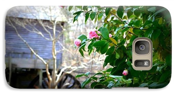 Galaxy Case featuring the photograph Grist Mill Roses by Tara Potts