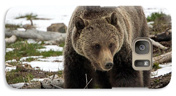 Galaxy Case featuring the photograph Grizzly Bear In Spring by Jack Bell