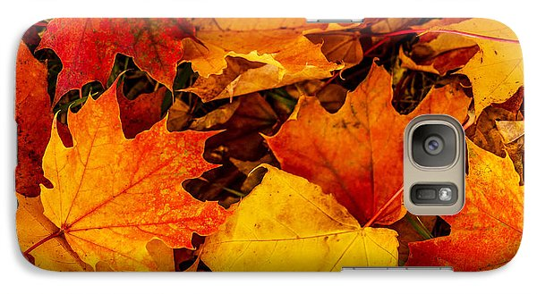Galaxy Case featuring the photograph Ground Cover by Dennis Bucklin