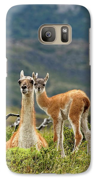 Llama Galaxy S7 Case - Guanaco And Baby (lama Guanaco by Adam Jones