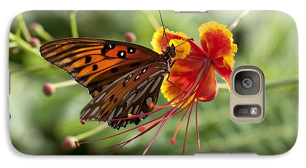 Galaxy Case featuring the photograph Gulf Fritillary Photo by Meg Rousher