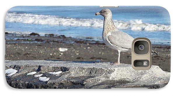 Galaxy Case featuring the photograph Seagull  by Eunice Miller