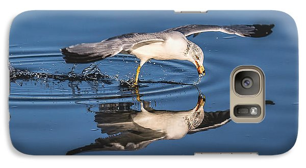 Galaxy Case featuring the photograph Gull Reflection by Susi Stroud