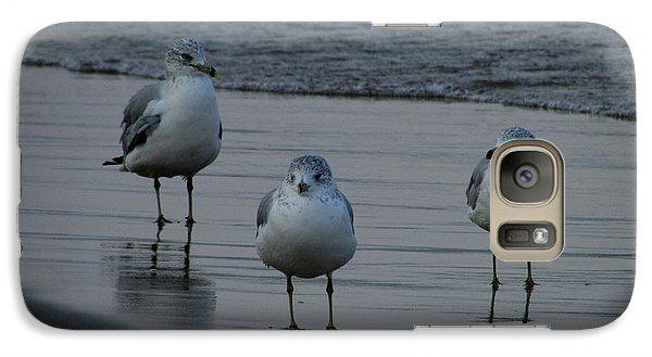 Galaxy Case featuring the photograph Gulls Night Out by Kimberly Mackowski