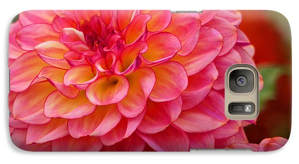 Galaxy Case featuring the photograph Hamari Rose - Dahlia by Jordan Blackstone