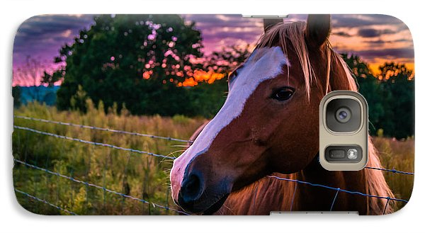 Galaxy Case featuring the photograph Hand Over The Hay by Julie Clements