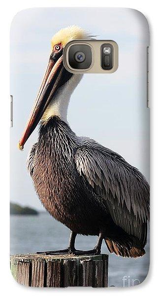 Handsome Brown Pelican Galaxy Case by Carol Groenen