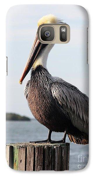 Handsome Brown Pelican Galaxy S7 Case
