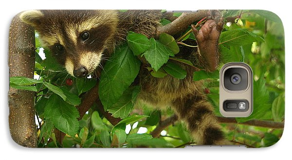 Galaxy Case featuring the photograph Hang In There by James Peterson