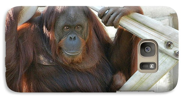 Galaxy Case featuring the photograph Hanging Out - Melati The Orangutan by Emmy Marie Vickers
