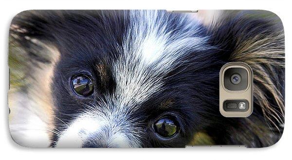 Galaxy Case featuring the photograph Hanna The Papillon Puppy by Karon Melillo DeVega