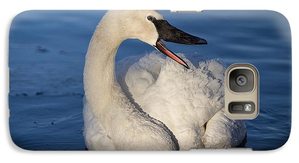 Galaxy Case featuring the photograph Happy Swan by Patti Deters