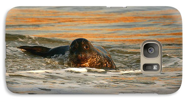 Galaxy Case featuring the photograph La Jolla Seal Sunset by John F Tsumas